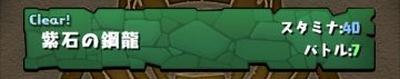 パズドラ 魔石龍の大洞窟 紫石の鋼龍